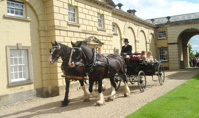 castle-hill-wedding-cart.jpg