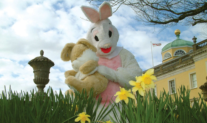 castle-hill-events-easter-bunny